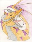 Orange/Purple Dragon by Arvata
