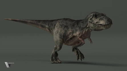 Tyrannosaurus Rex by Vanishin