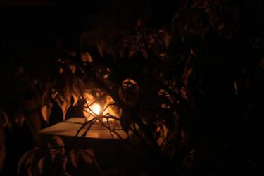 Samhain O'Lantern by diebitch2947