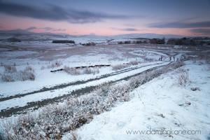 Winter Landscape by DamianKane