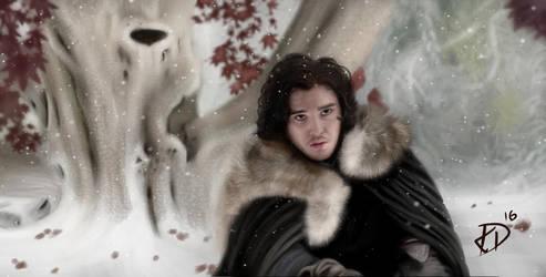 Jon Snow by CrisisEnvy