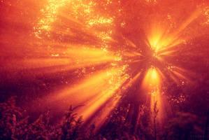 Czerwony Pazdziernik by Syrjusz