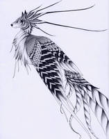 Simurgh by verreaux