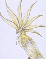 Solar bird by verreaux