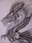 Dragon Acuatico by verreaux