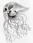 SeaSkull by verreaux