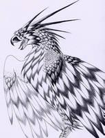 Thunder Bird by verreaux