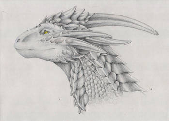 .Silver Dragon. by Hawky515