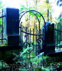 the gate by Attila-G