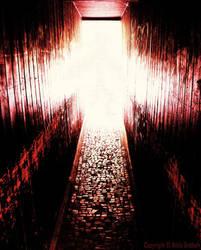 into the light by Attila-G
