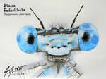 Blaue Federlibelle by Attila-G