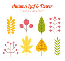 8 Flat Autumn Leaves And Flowers Vector by FreeIconsdownload