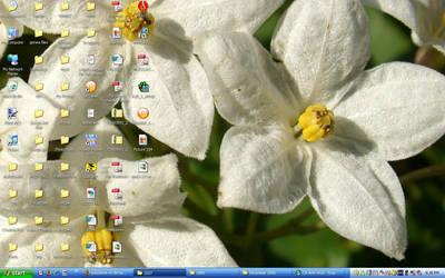 Desktop by redcrystal