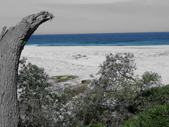 Brassie Bay by redcrystal