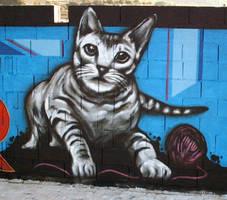 Gato en Cantagallet by koolkiz