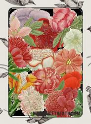 Nicetoeatu-flowers-by Heeykiid by heeykiid