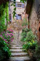 Secret Garden by melii-lilyy