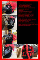 Minecraft Aether Moa Fursuit mask Collage by BlueEyes9