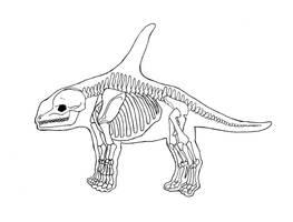 Terrestrial Odontoceti Skeleton by Allison-beriyani