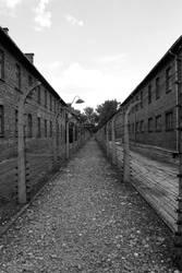 Aushwitz I by Drodil