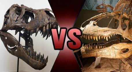 DB Claim: Tyrannosaurus vs Giganotosaurus by Kiryu2012