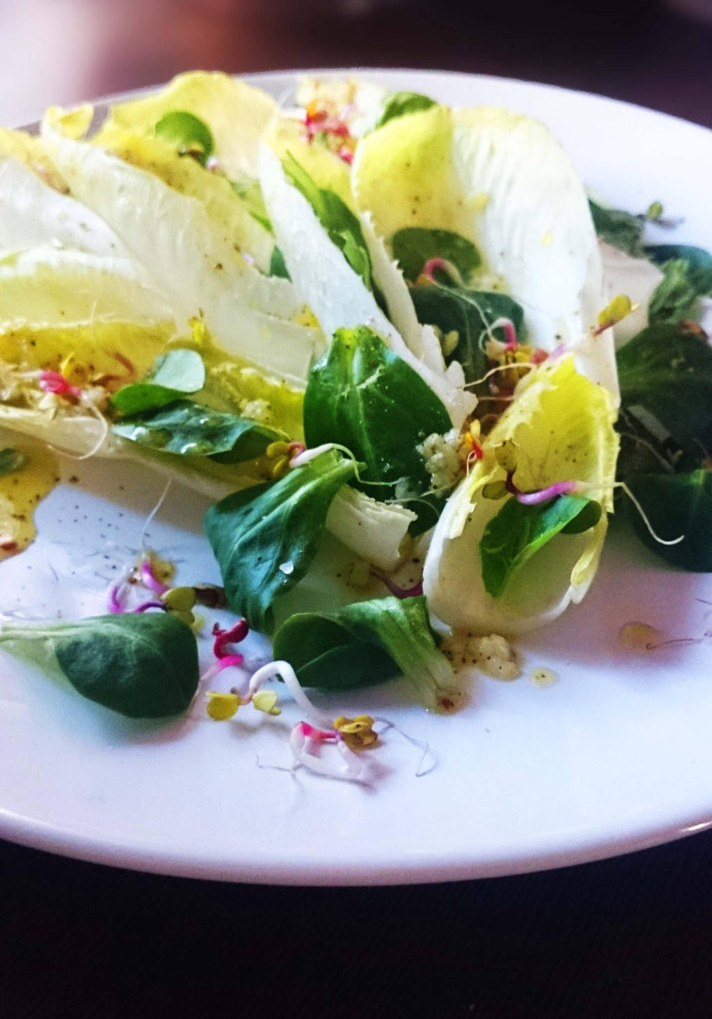 Chicory and lamb's lettuce salad by CookConcept