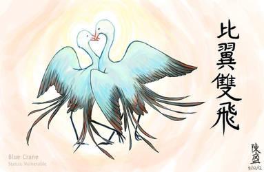 EA Project 7: Blue Crane (happy anniversary!) by meihua
