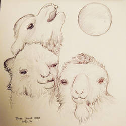 Inktober Day 21 - Three Camel Moon by meihua