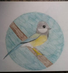 Great Tit Bird by icefur2002