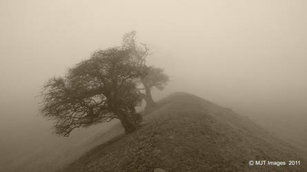 Through The Mist 3 by MichaelJTopley