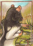 The Discovery ACEO by Redwall151