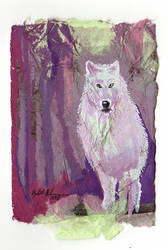 Collage White Wolf ACEO by Redwall151