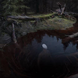 Forest stream by Vulpes-Ibculta