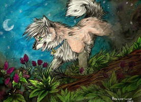 AT:Zaira by Noname-wolf