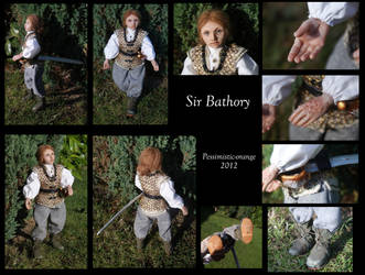 Sir Bathory McAllister by pessimistic-orange
