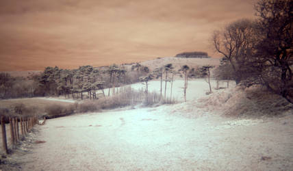 IR Farmland by Somasemaj