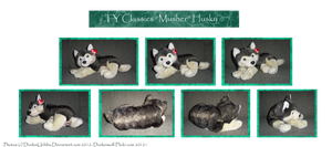 .: Ty: Musher Husky plush :. by BeachBumDunkin