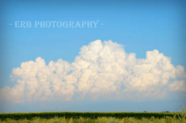 A Storm's A Brewing by erbphotography