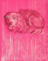 Pink dog by isismas