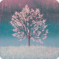 Cherry tree by isismas