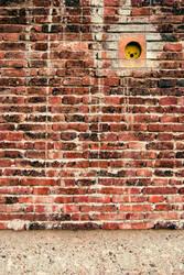Brick Wall by isismas