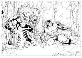 Wolverine vs Sabertooth by devgear