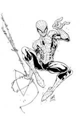 Spiderman Inks by devgear