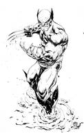 High Res   Wolverine  by devgear