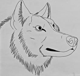Wolf Studies 3- Wolf 3:4 View by Saberrex
