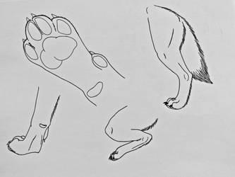 Wolf Studies 6- Paws 2 by Saberrex