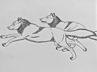 Wolf Studies 7- Running Wolves by Saberrex
