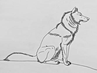 Wolf Studies 13- Sitting Wolf Profile View by Saberrex
