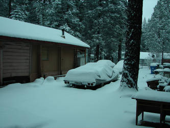 Snow in the yard by Mistgod