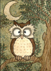 owl by InesPeace